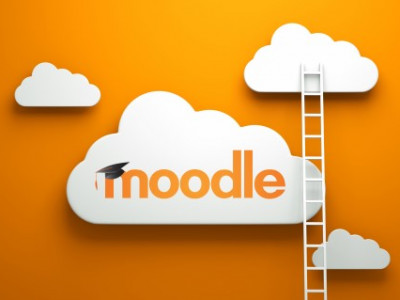 Online leeromgeving in Moodle